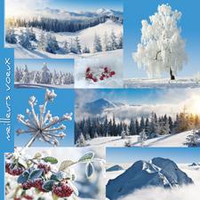 Carte de voeux bonne année C1334