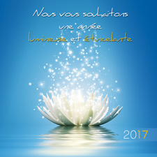 Carte virtuelle pour le nouvel an collection e cards for Quelle entreprise creer en 2017