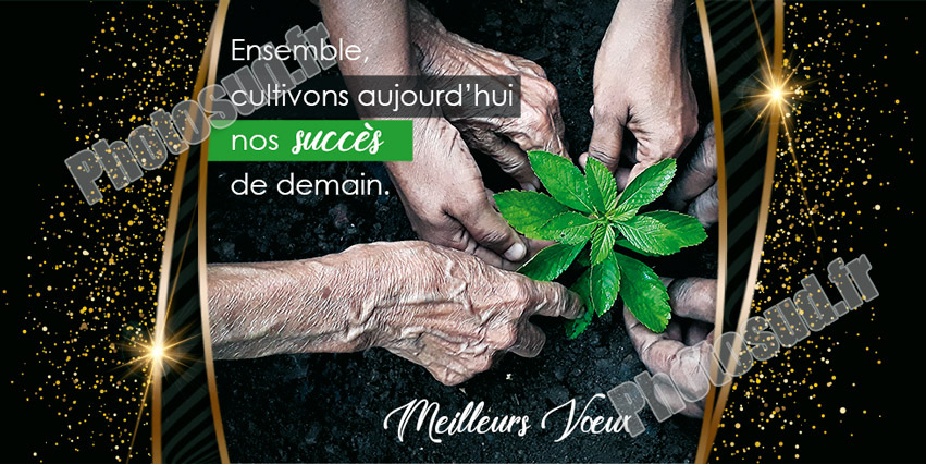 Post r�seaux sociaux P2147