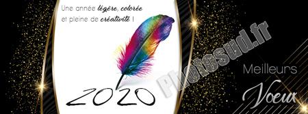 Banni�re voeux C2015