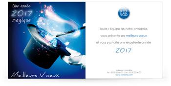 Ecard professionnelle P1339