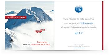 Ecard professionnelle P1345
